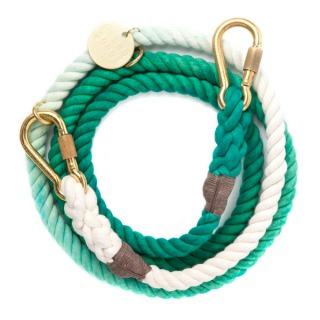 Teal-Ombre-Rope-Leash-Adjustable.jpg