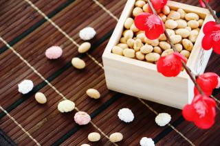 setsubun-beans-plum.png